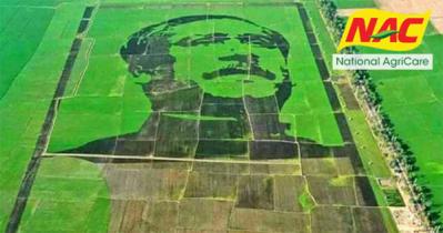 Bangabandhu crop-field mosaic breaks Guinness World Records