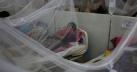 আজও ১৬৩ ডেঙ্গু রোগী হাসপাতালে ভর্তি