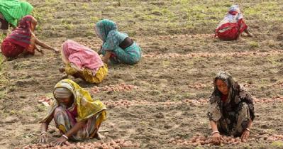 পুরুষের সমান কাজ করেও মজুরি বৈষম্যের শিকার নারীরা
